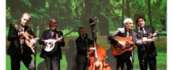 A Bluegrass Experience 480x408